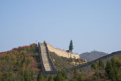 Asia China, Beijing, badaling national forest park, the Great Wall, red leaves Stock Photos