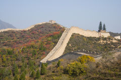 Asia China, Beijing, badaling national forest park, the Great Wall, red leaves Royalty Free Stock Images