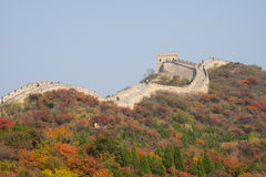 Asia China, Beijing, Badaling national Forest Park, the Great Wall, red leaves Stock Photography