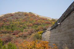 Asia China, Beijing, Badaling national Forest Park, the Great Wall, red leaves Stock Image
