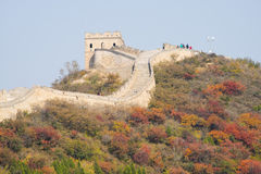 Asia China, Beijing, Badaling national Forest Park, the Great Wall, red leaves Stock Images