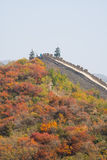 Asia China, Beijing, Badaling national Forest Park, the Great Wall, red leaves Stock Photo