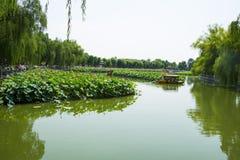 Asia China, Beijing, Beihai Park, The lotus pond, the boat Stock Photography