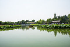 Asia China, Beijing, Beihai Park, The lotus pond, the boat Royalty Free Stock Images