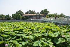 Asia China, Beijing, Beihai Park, The lotus pond, stone bridge Royalty Free Stock Photos