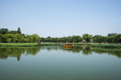 Asia China, Beijing, Beihai Park, Summer garden scenery,The lotus pond, the boat. Asia China, Beijing, Beihai Park, the Chinese ancient royal garden, the Stock Photos