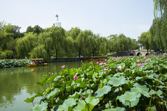 Asia China, Beijing, Beihai Park, White tower, lotus pond, the boat, Royalty Free Stock Images