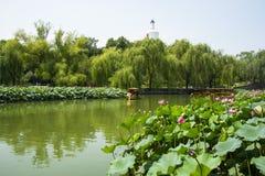 Asia China, Beijing, Beihai Park, White tower, lotus pond, the boat, Royalty Free Stock Photo