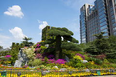 Asia China, Beijing, Chang'an Avenue, three-dimensional flower beds Royalty Free Stock Image
