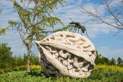 Asia China, Beijing, Changyang Park, Landscape sculpture, stone walnut,ants Royalty Free Stock Photography