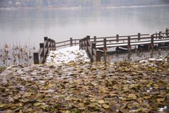 Asia China, Beijing, chaoyang park, the winter scenery, wooden bridge, deciduous Stock Photo