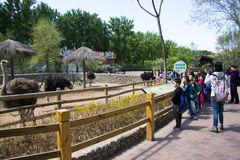 Asia China, Beijing, Daxing, wild animal park,Park Landscape, Stock Image