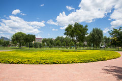 Asia China, Beijing, Guishui River Forest Park,Garden scenery,  yellow flower beds, trees Stock Photos