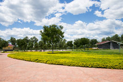 Asia China, Beijing, Guishui River Forest Park,Garden scenery,  yellow flower beds, trees Stock Images