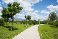 Asia China, Beijing, Guishui River Forest Park,Street lamp, tree, path Stock Photos