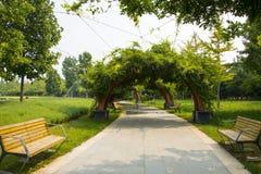 Asia China, Beijing, international flower port,Bench, Midorito, arch door, Royalty Free Stock Photography