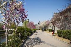 Asia China, Beijing, jade river Ruins Park, spring landscape Stock Photo