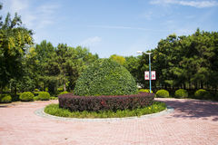 Asia China, Beijing, Jianhe Park, Landscape decoration, grass carving Stock Photos
