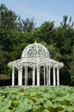 Asia China, Beijing, Jianhe Park, white Pavilion, Lotus pond Royalty Free Stock Photos
