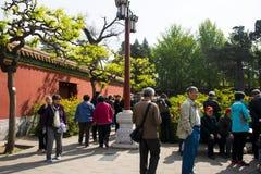 Asia China, Beijing, Jingshan Hill Park, spring garden landscape,Peony Festival Stock Image