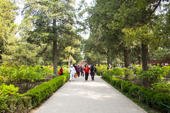 Asia China, Beijing, Jingshan Hill Park, spring garden landscape Stock Image