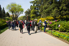 Asia China, Beijing, Jingshan Hill Park, spring garden landscape,Peony Festival Stock Images