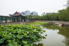 Asia, China, Beijing, lianhuachi park,Summer landscape, lotus pond, pavilions, corridors Royalty Free Stock Images