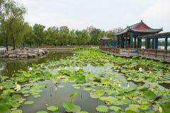 Asia, China, Beijing, lianhuachi park,Summer landscape, lotus pond, pavilions, corridors Stock Images
