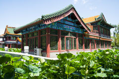 Asia China, Beijing, Longtan Lake Park, lotus pond and antique building Royalty Free Stock Images
