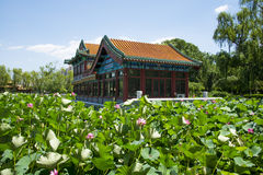 Asia China, Beijing, Longtan Lake Park, lotus pond and antique building Stock Images