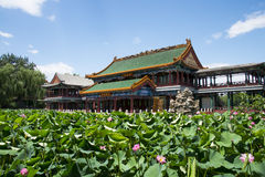 Asia China, Beijing, Longtan Lake Park, lotus pond and antique building Royalty Free Stock Photography