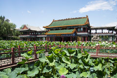 Asia China, Beijing, Longtan Lake Park, lotus pond and antique building Stock Image