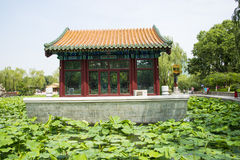 Asia China, Beijing, Longtan Lake Park, Summer landscape, Pavilion,green lotus pond Stock Image