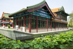 Asia China, Beijing, Longtan Lake Park, Summer landscape, Pavilion,green lotus pond Royalty Free Stock Photos