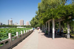 In Asia, China, Beijing, lotus pond park,Landscape Stock Photo