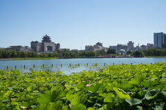 Asia China, Beijing, lotus pond park,The lotus pond, Beijing West Railway Station. Asia China, Beijing, lotus pond park, blue sky and water, far from the Beijing stock photo
