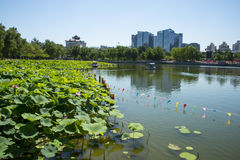 In Asia, China, Beijing, lotus pond park, lotus pond, modern architecture Stock Photo
