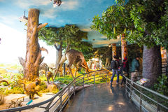 Asia, China, the Beijing Museum of Natural History, indoor exhibition hall Royalty Free Stock Photography