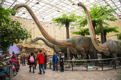 Asia, China, the Beijing Museum of Natural History, indoor exhibition hall. The dinosaur theme park Royalty Free Stock Image