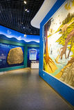Asia, China, the Beijing Museum of Natural History, indoor exhibition hall Stock Photography