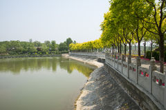 Asia China, Beijing, North Palace Forest Park, garden architecture, lake, white stone railings, tree Royalty Free Stock Images