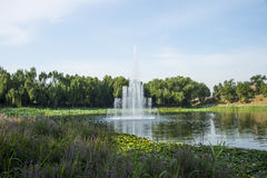 Asia China, Beijing, Old Summer Palace,Garden  landscape, fountain Royalty Free Stock Photos