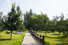 Asia China, Beijing, Olympic Forest Park, landscape architecture,Wooden trail Royalty Free Stock Photo