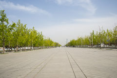 Asia China, Beijing, Olympic Park, landscape Avenue Royalty Free Stock Images