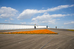 Asia China, Beijing, park expo garden, observation deck Stock Images
