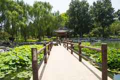 Asia China, Beijing, Taoranting Park,summer landscape,The pavilion, wooden railings Stock Photo