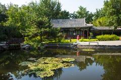 Asia China, Beijing, Xuanwu Yiyuan, summer landscape,courtyard Stock Photos