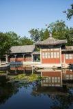 Asia China, Beijing, Xuanwu Yiyuan, summer landscape,courtyard Stock Photography