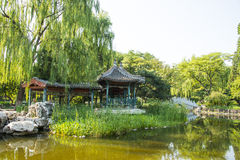 Asia China, Beijing, Xuanwu Yiyuan, summer landscape, pavilion Gallery Royalty Free Stock Photography