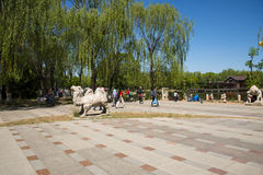 Asia, China, Beijing, yangshan park,Landscape in early summer Royalty Free Stock Photo